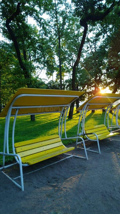 Banco-oscilación moderno hermoso en un parque público de la ciudad en la puesta del sol Visión vertical imagen de archivo libre de regalías