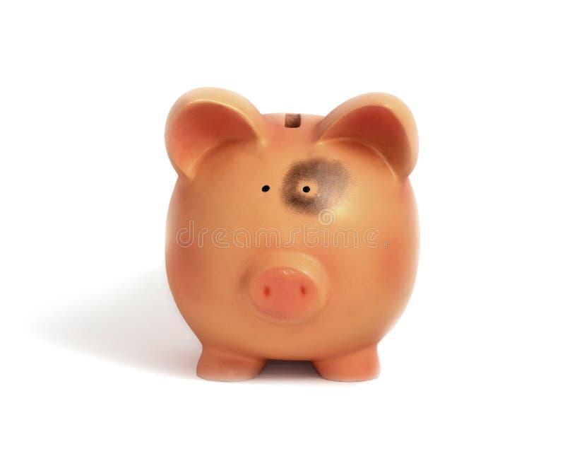 Banco Piggy com equimose do olho fotografia de stock royalty free