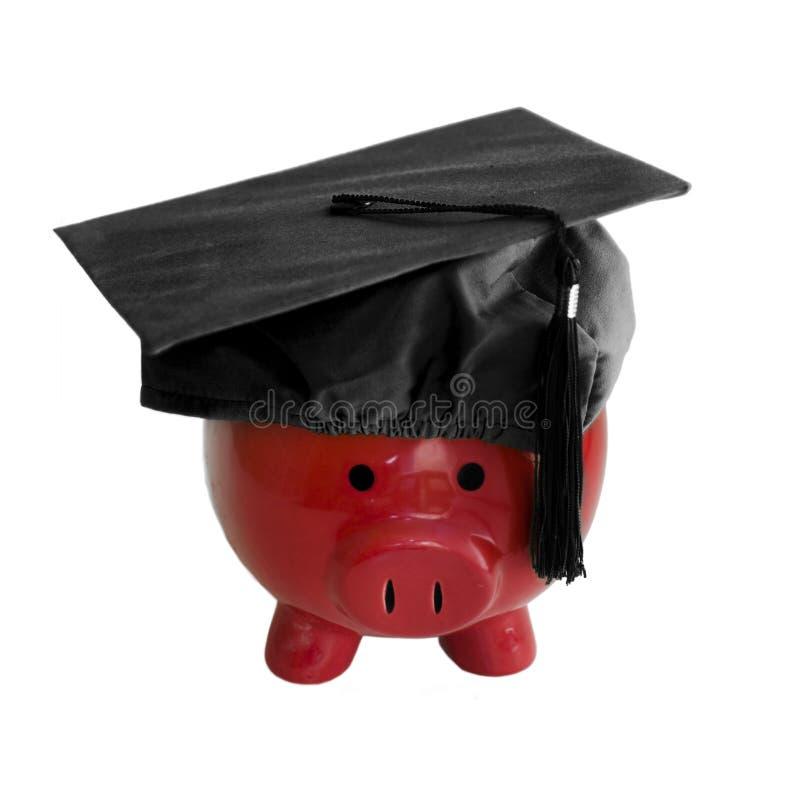 Banco Piggy com o tampão da graduação da faculdade imagens de stock