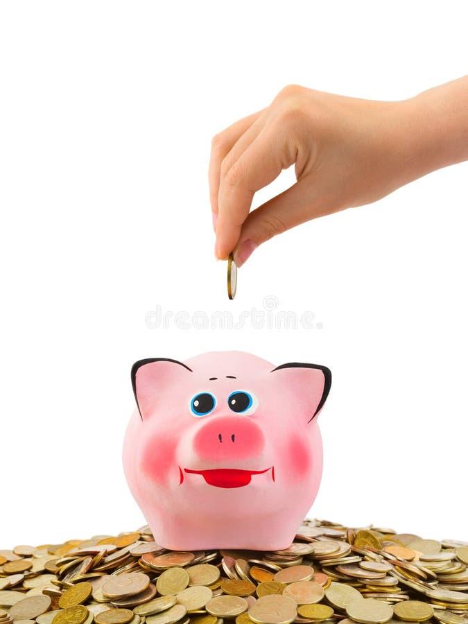 Banco Piggy e mão com moeda imagens de stock royalty free