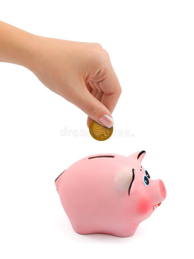 Banco Piggy e mão com moeda imagem de stock