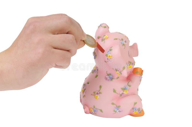 Banco Piggy isolado no branco foto de stock