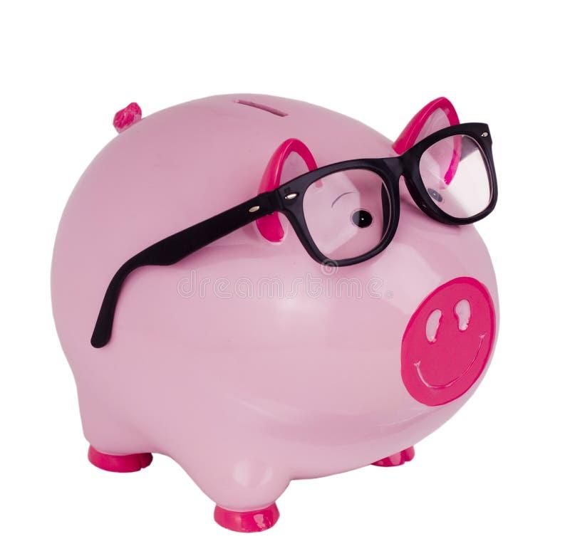 Banco Piggy que desgasta vidros pretos do espetáculo imagens de stock