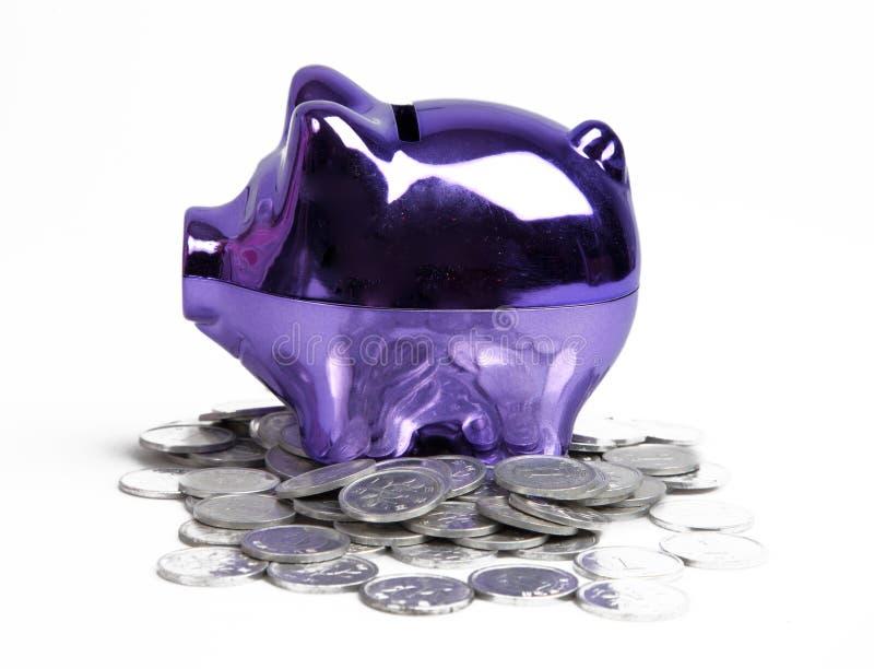 Banco piggy roxo foto de stock royalty free