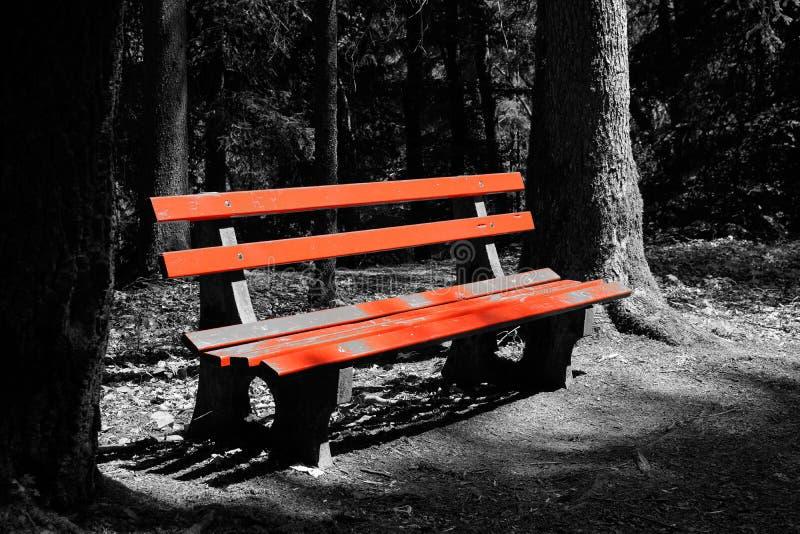 Banco rojo blanco y negro en el paisaje de madera imagen de archivo