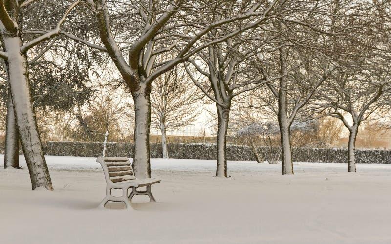 Banco solitario en un parque cubierto con nieve imágenes de archivo libres de regalías
