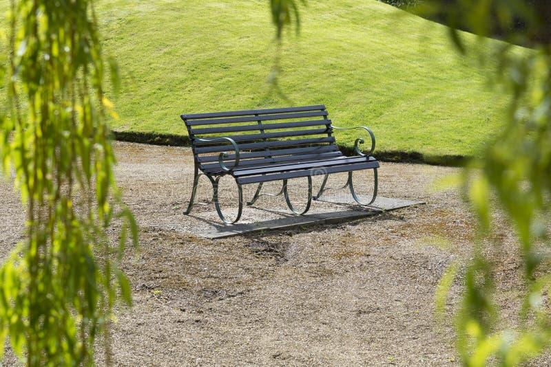 Banco solo del giardino visto attraverso i rami di albero del salice usati come franco immagine stock