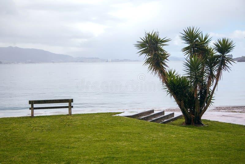Banco solo en la orilla del Océano Atlántico, cerca de las palmeras y del césped verde hermoso, España, Mountain View imagenes de archivo