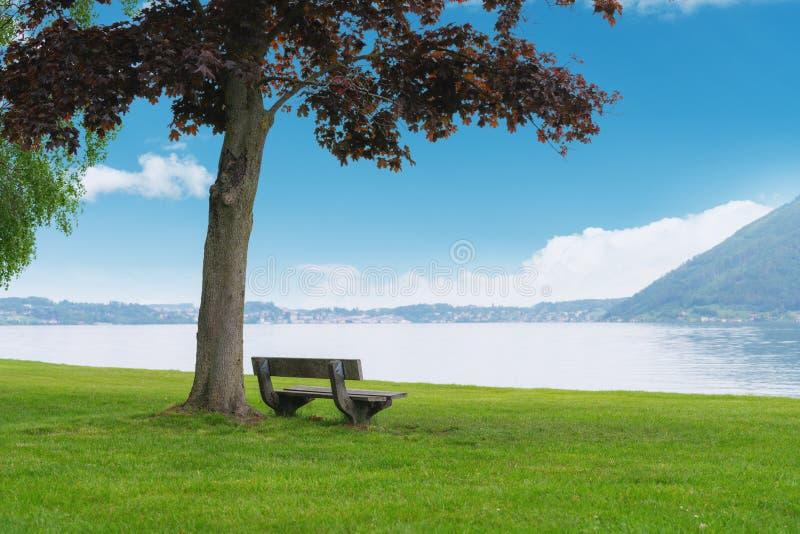Banco sotto l'albero con il lago e montagna nel giardino di estate fotografie stock libere da diritti