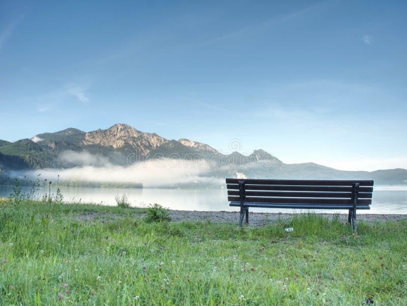Banco sotto un albero su una riva del lago Montagne a fondo fotografia stock