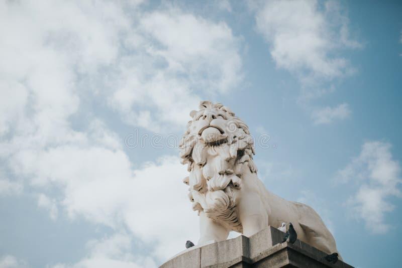 Banco sul Lion Sculpture com fundo do céu azul, perto da ponte de Westminster, em um dia ensolarado em Londres, Reino Unido fotos de stock royalty free
