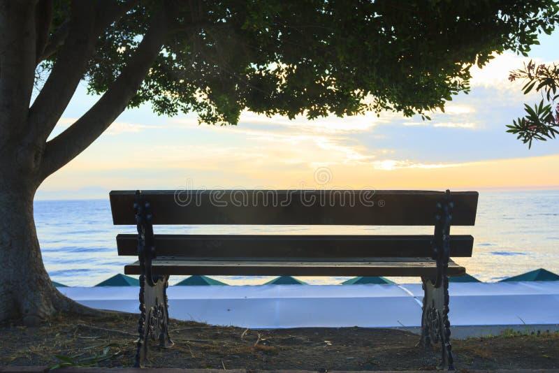 Banco vacío con un árbol en el fondo del mar en la salida del sol fotografía de archivo libre de regalías