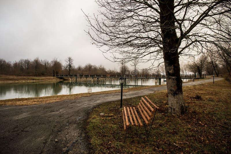 Banco vazio no parque perto da lagoa no dia nevoento, cena fria minimalistic da estação bench no lago na névoa no banco da flores imagem de stock