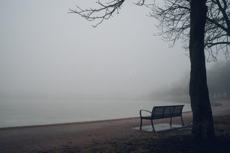 Banco vazio no parque perto da lagoa no dia nevoento imagem de stock