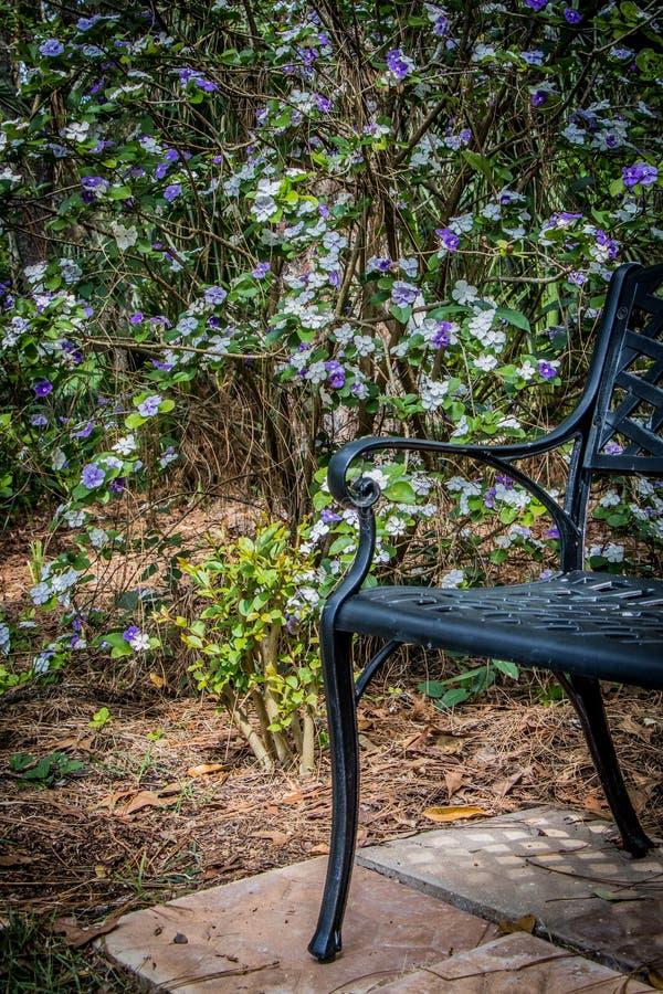 Banco y flores de parque en el jardín imagen de archivo libre de regalías