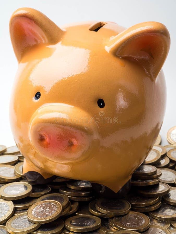 Banco y monedas, un dinero de ahorro del cerdo para el concepto futuro de la inversión foto de archivo