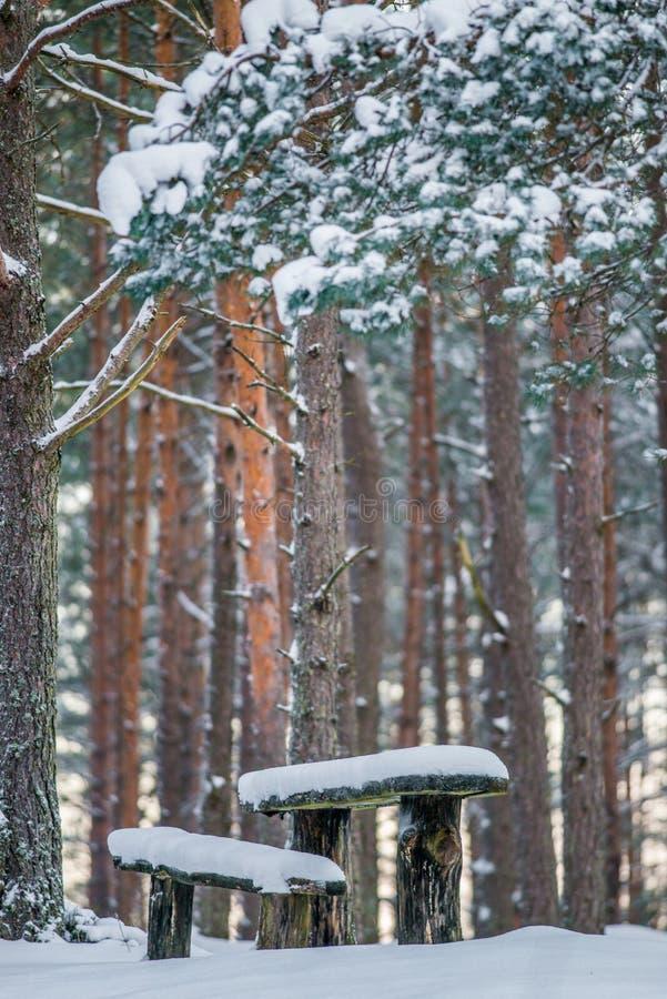 Banco y tabla cubiertos con nieve foto de archivo libre de regalías