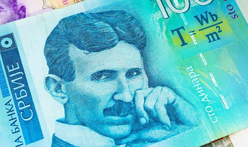 Banconota serba di valuta di dinara 100, fine su Fondi RSD della Serbia fotografia stock libera da diritti