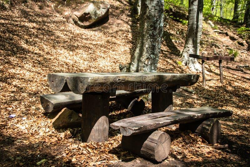 Bancos de madeira e tabela em uma floresta foto de stock