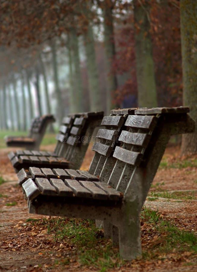 Bancos de madera en otoño fotos de archivo libres de regalías