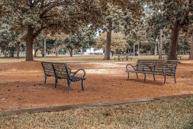 Bancos debajo de los árboles en el parque hermoso de la ciudad fotos de archivo libres de regalías