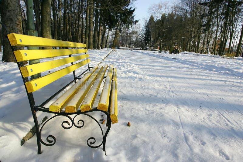 Bancos em um parque coberto com a neve imagem de stock