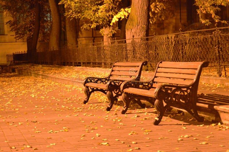 Bancos en el parque del otoño fotografía de archivo libre de regalías
