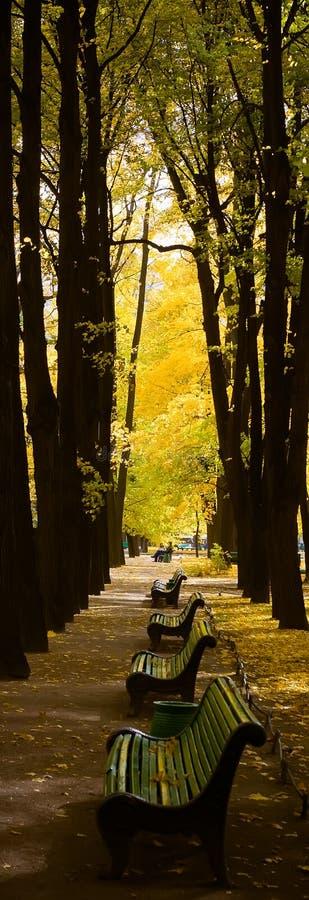 Bancos en parque del otoño imágenes de archivo libres de regalías