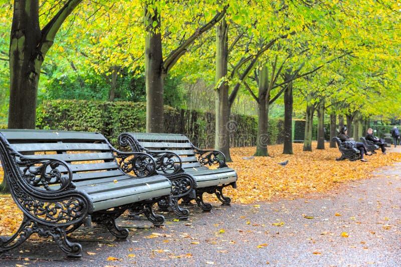 Bancos en Regent's Park de Londres en otoño fotografía de archivo