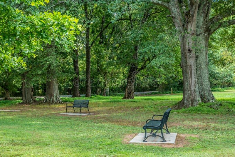 Bancos en un parque por los árboles de sombra fotos de archivo libres de regalías