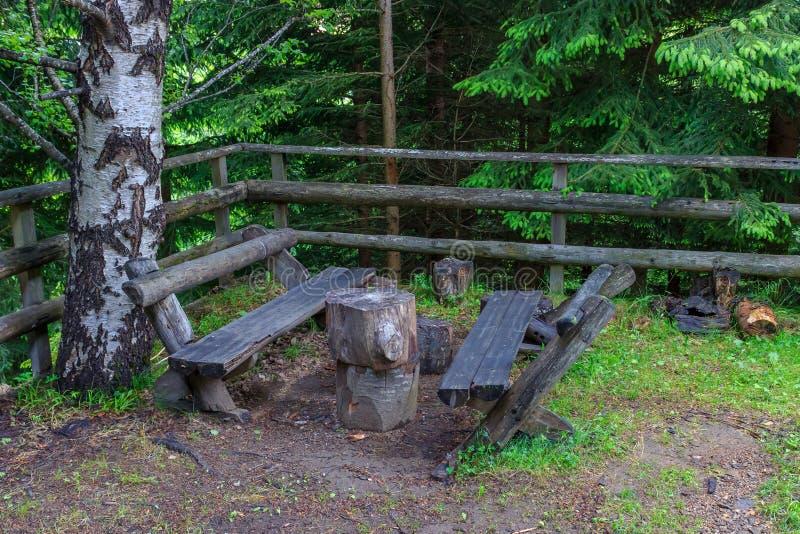 Bancos hechos a mano de madera en el patio trasero rodeado por los árboles verdes fotos de archivo