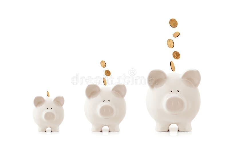 Bancos Piggy crescentes fotos de stock royalty free