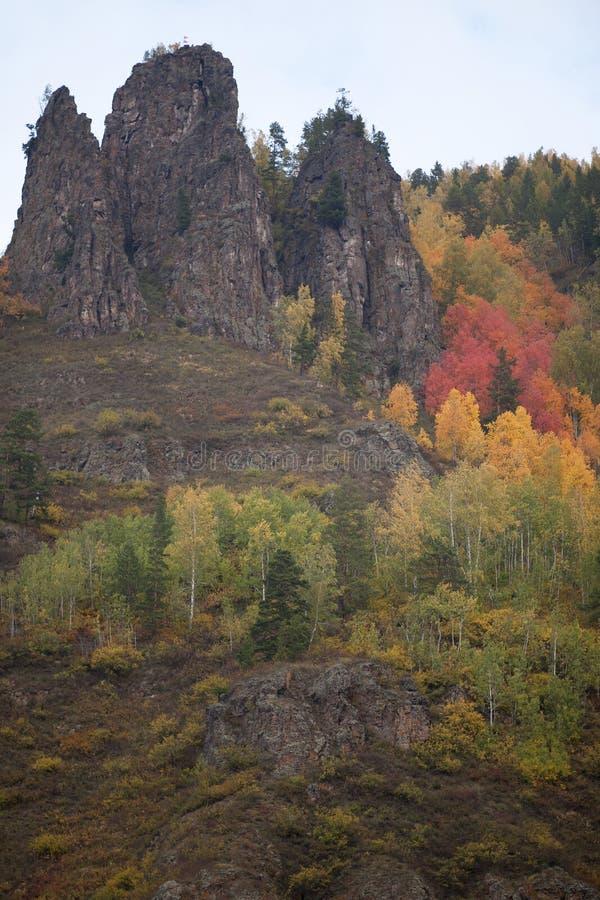 Bancos rochosos do Rio Ienissei no outono, Sibéria ocidental fotos de stock