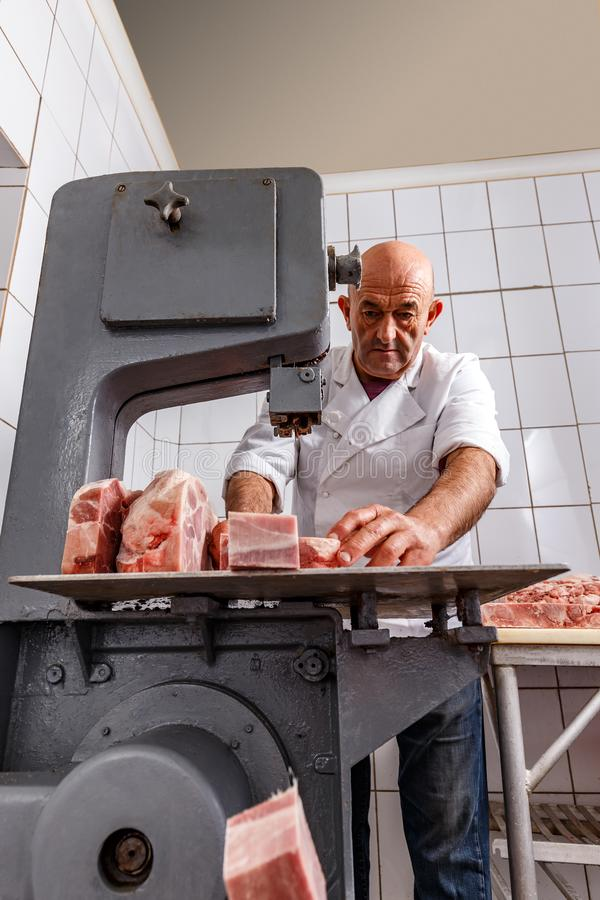 Band saw cuts meat. In a meat factory stock image