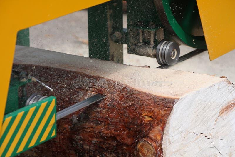 Band saw. Sawmill cut pine log royalty free stock images