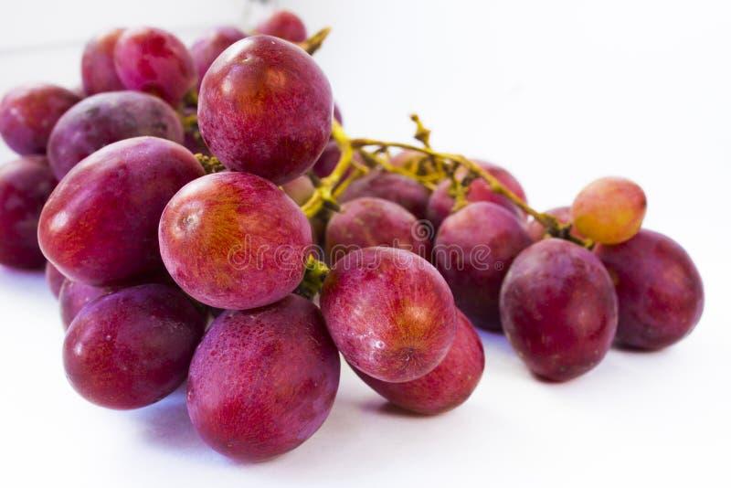 banda ścinku zawierać ścieżka winogron Biały tło zdjęcie stock