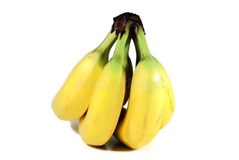 banda bananów fotografia royalty free
