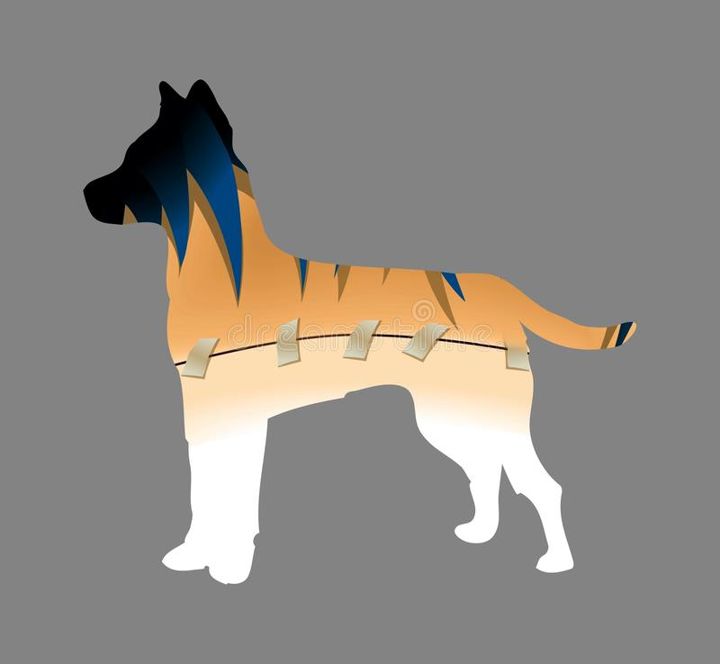 Bandage of a wounded body to a dog. Illustration design style on grey background vector illustration