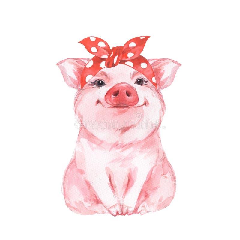Bandana 1 свиньи FFunny нося иллюстрация штока