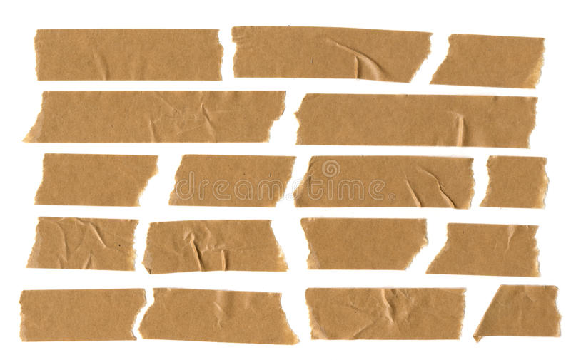 Bande écossaise de Brown sur le fond blanc illustration stock