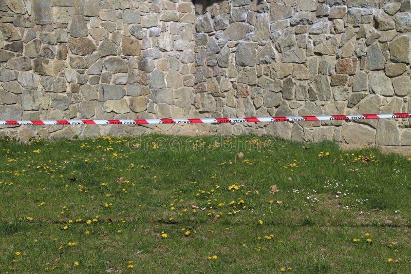 Bande avec des pissenlits dans le jardin de château par le château de Budatin, région d'ilina de ½ de Å photos stock
