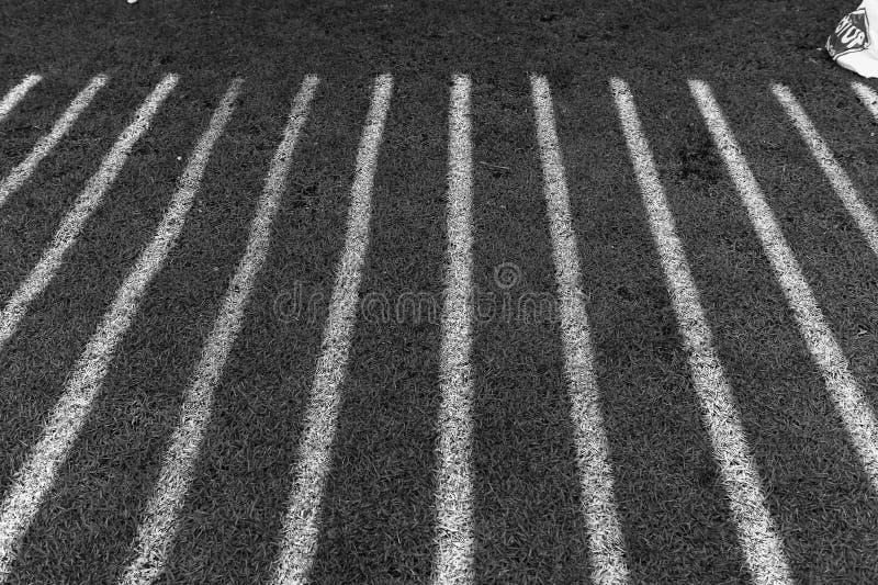 Bande in bianco e nero dal sole fotografia stock libera da diritti