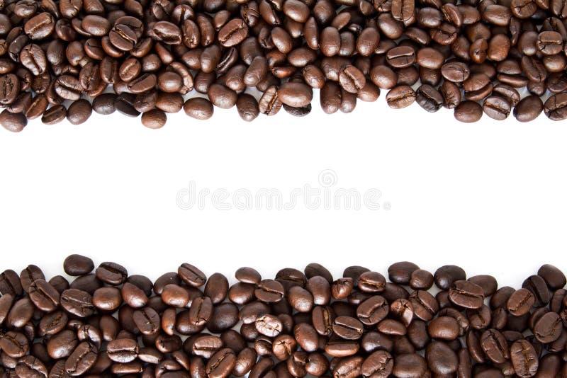 Bande dei chicchi di caffè isolate fotografia stock