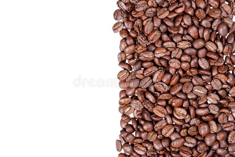 Bande dei chicchi di caffè isolate nel fondo bianco fotografie stock