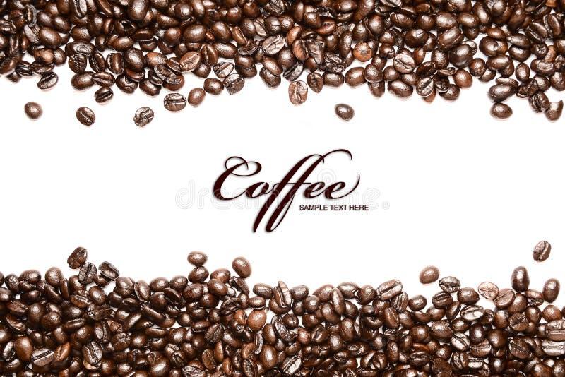 Bande dei chicchi di caffè isolate nella priorità bassa bianca, fotografia stock libera da diritti