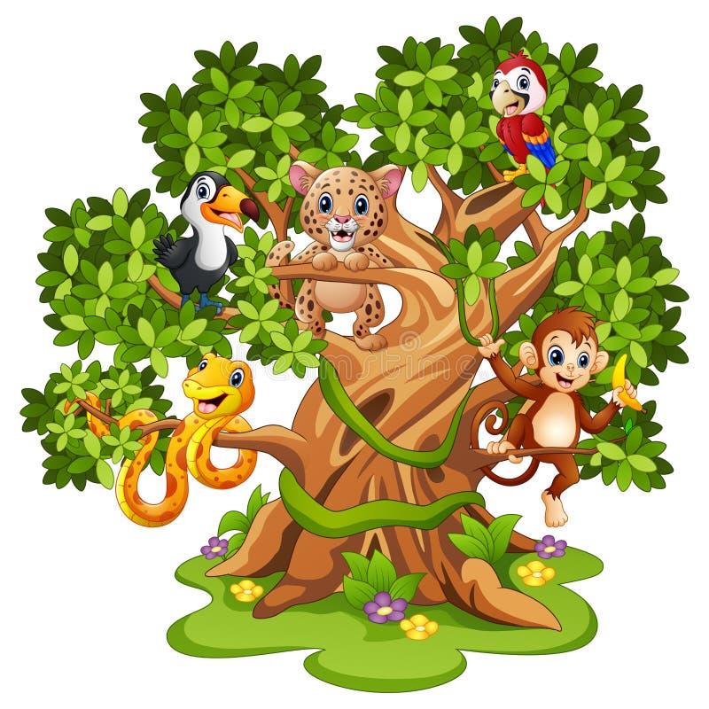 Bande dessinée d'animaux sauvages sur les arbres illustration de vecteur