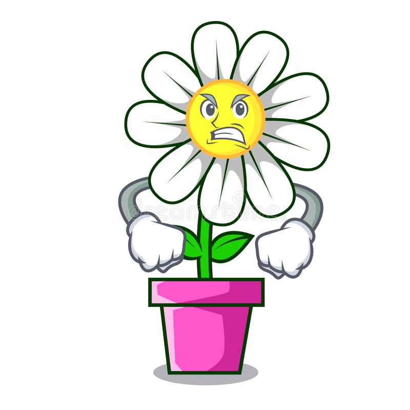 Bande dessinée fâchée de mascotte de fleur de marguerite illustration libre de droits