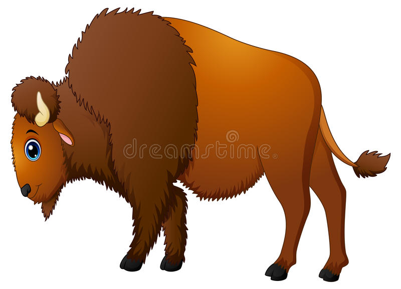 Bande dessinée mignonne de bison illustration stock