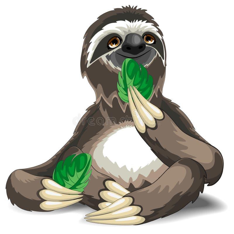 Bande dessinée mignonne de paresse mangeant la feuille illustration stock