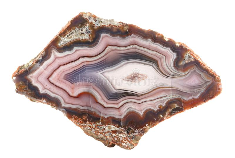 Banded Agate specimen. Found in Mexico, isolated on a white background. The layered structure is formed when a rock cavity or geode is filled with siliceous stock photo